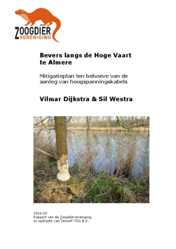 Bevers langs de Hoge Vaart te Almere 2016