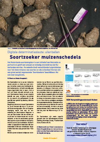 Soortzoeker-muizenschedels-1