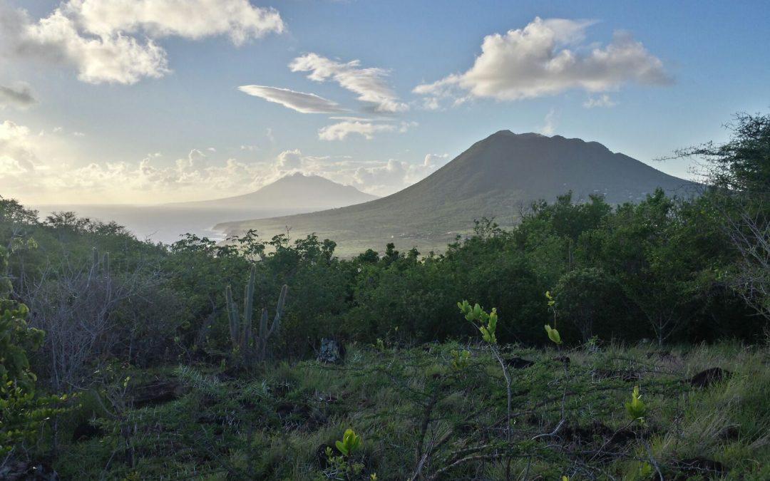 Zoogdierexpeditie Sint Eustatius