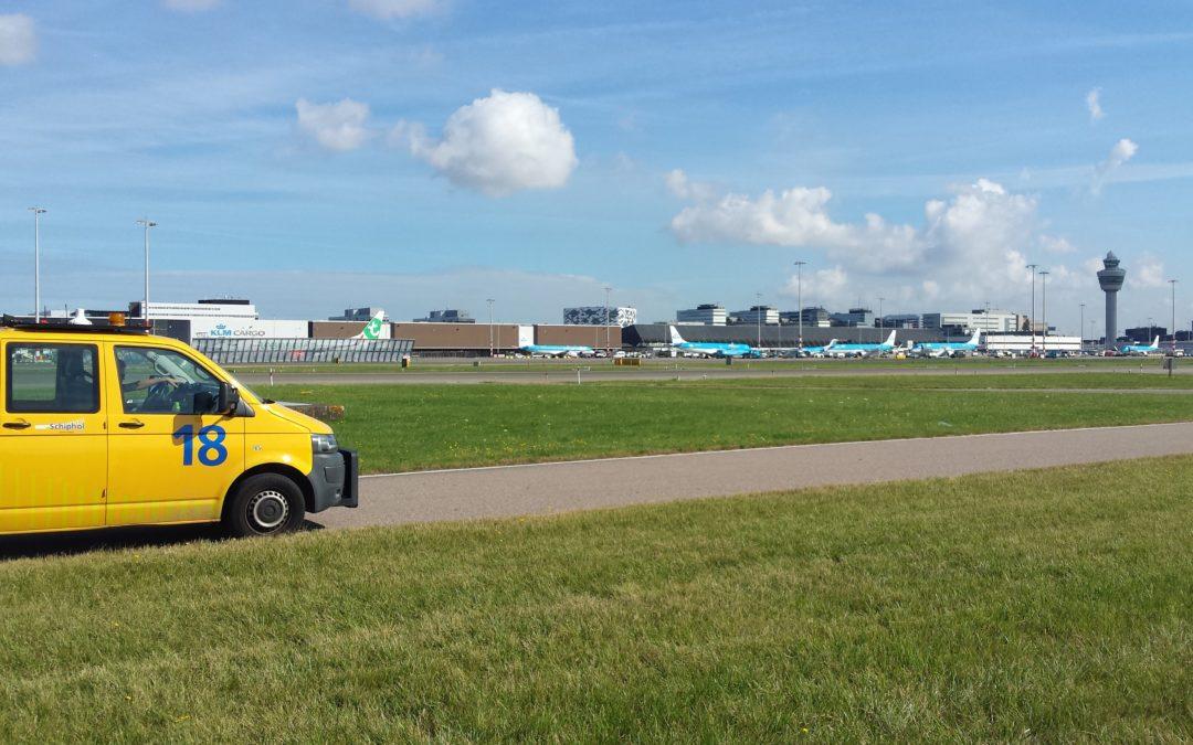 Onderzoek naar het populatieverloop van veldmuizen op Schiphol Airport