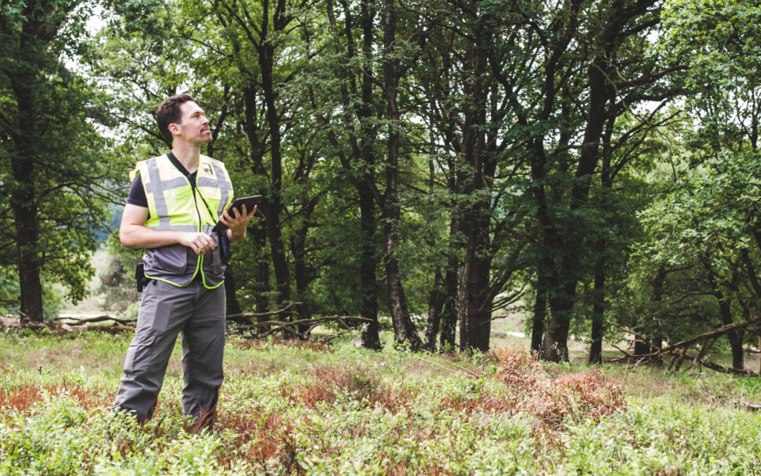 Gezocht: junior flexwerker ecologisch veldonderzoek!