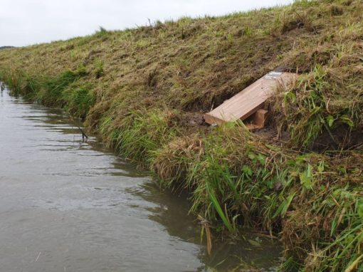 Ontwerp wezelnestkast voor open polderlandschap